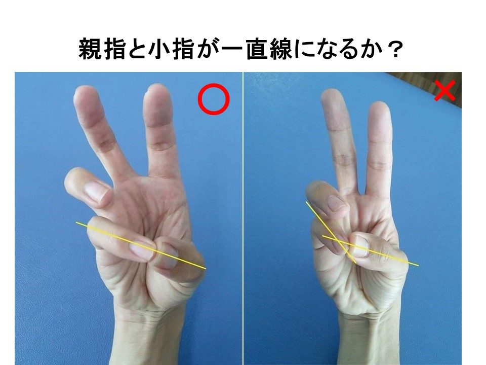 小指と親指