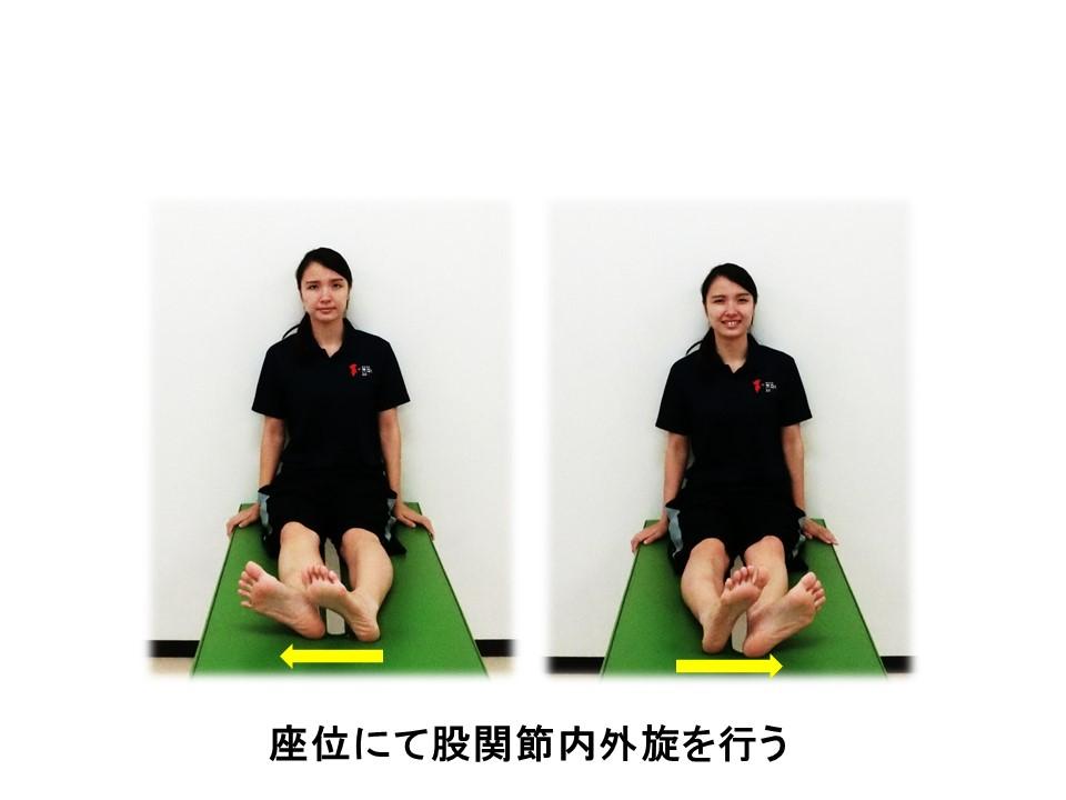 股関節運動1