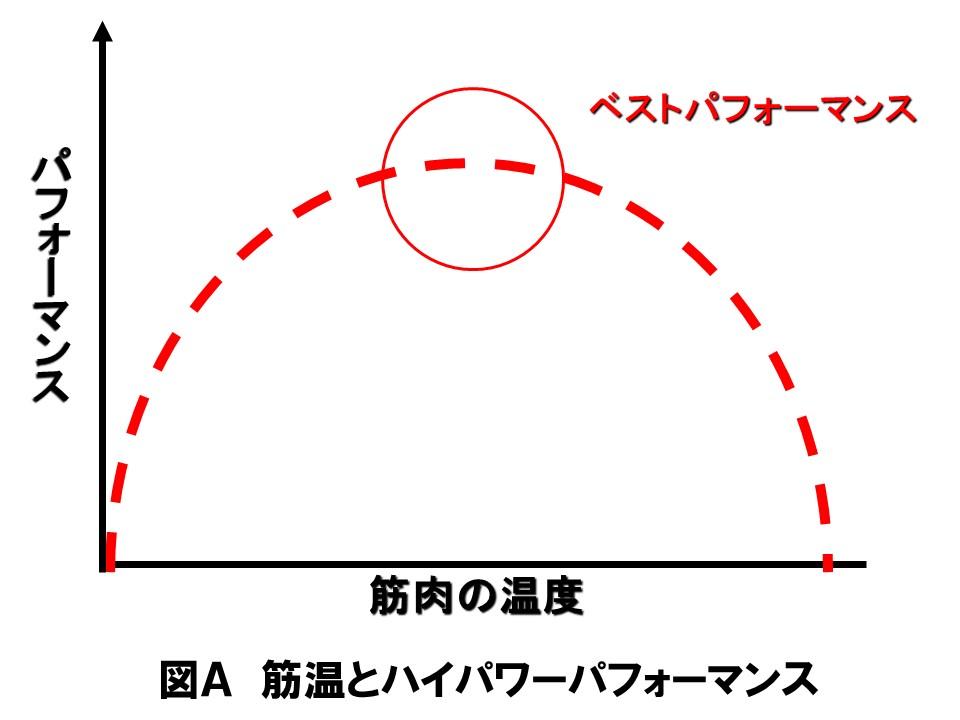 図A 筋温