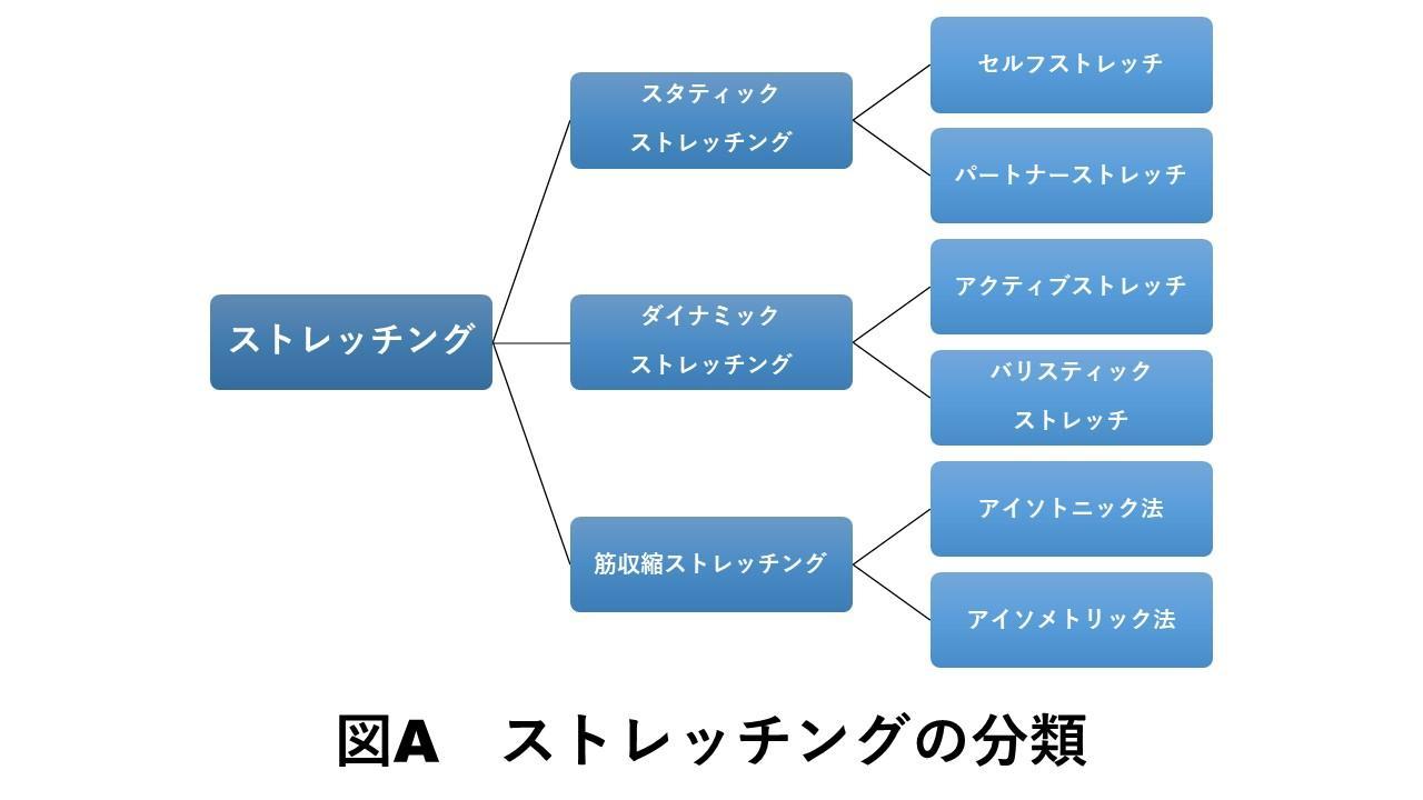 ストレッチングの分類
